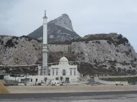 Mosche an der Spitze Gibraltas