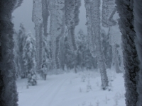 Winteraufnahmen