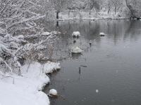 Winterlandschaft 25.12.2010