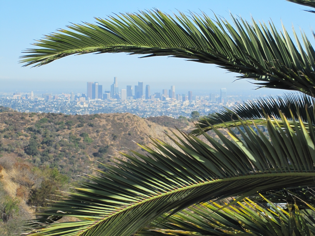 Blick auf dowtown Los Angeles