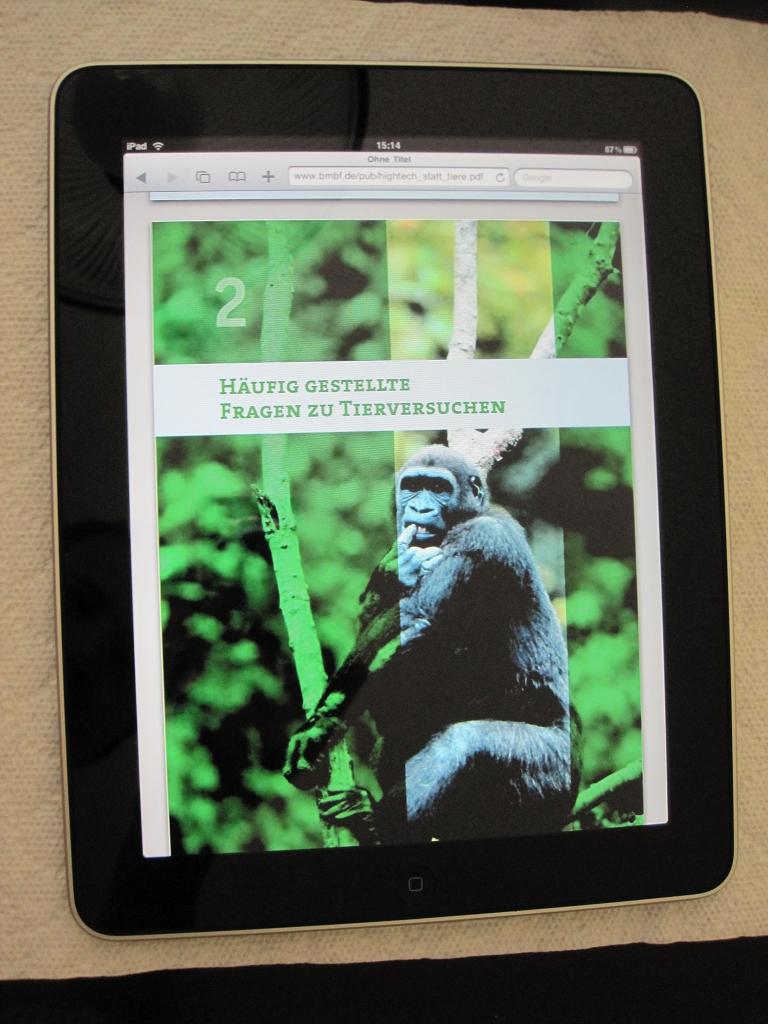 Mein neues iPad