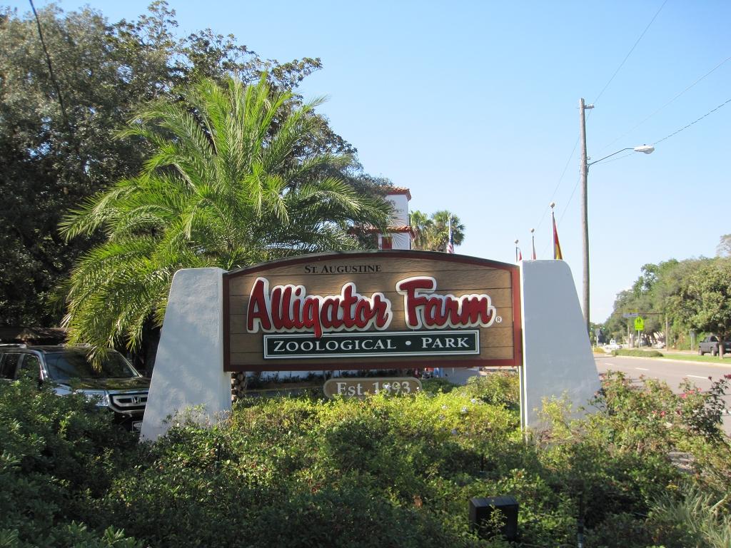Aligator Farm in St. Augustine